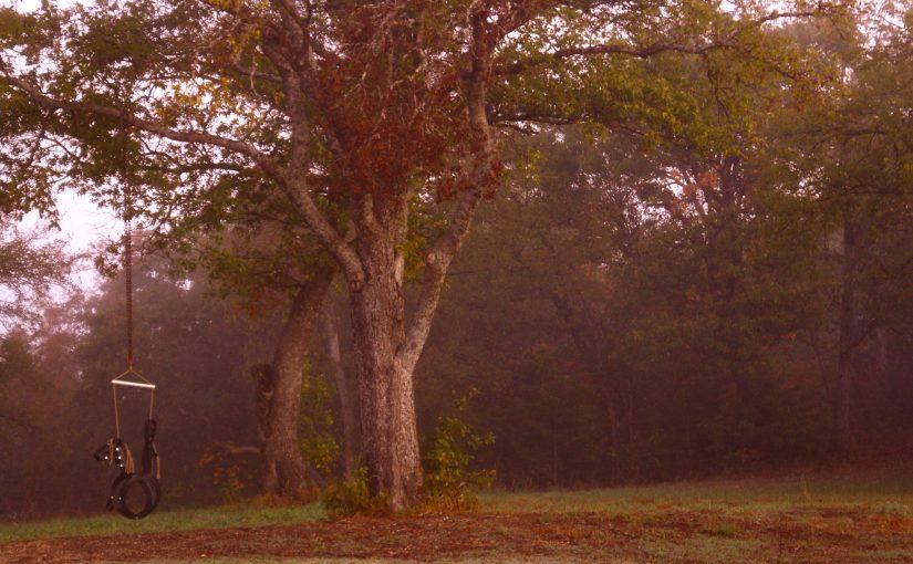 My Autumn